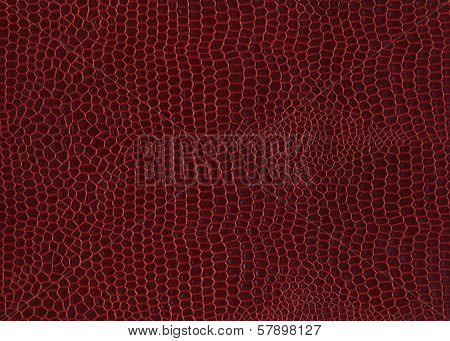 Crocodile skin red background