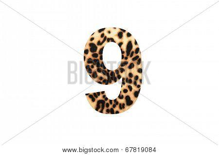 Font  Tiger Cotton
