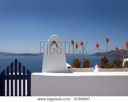 Red flowers of Santorini