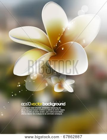 eps10 vector realistic flower on blurred background
