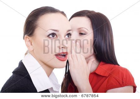 portrait of a two woman