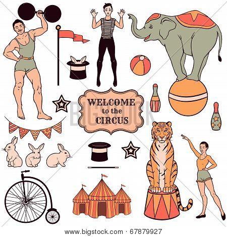 Cute Circus Animals Set: Tiger, Elephant, Seal, Bear