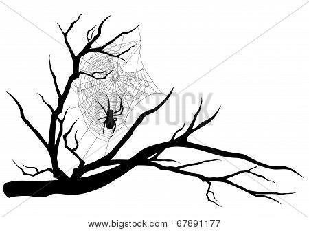 Spider Web Tree