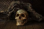 Still Life with a Skull concept on the art. poster