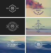 Trendy Retro Vintage Insignias Bundle. Vector shape. Fully editable in Illustrator. Only free font were used.  poster