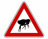 Detailed and colorful illustration of flea warning sign poster