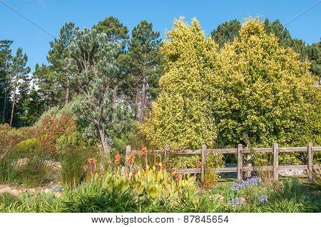 Garden Near Sir Lowrys Pass