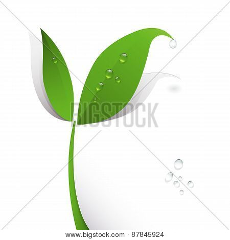 Green Paper Leaf And Water Drops