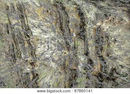 Gray background  with natural texture