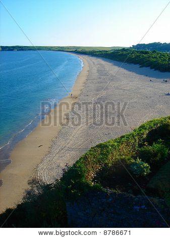 Seascape Beach Tracks