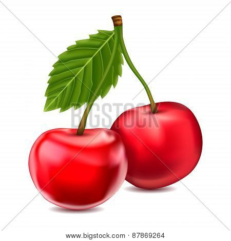 Vector cherries