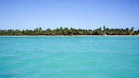 View From Sea On Beach Of Isla Saona