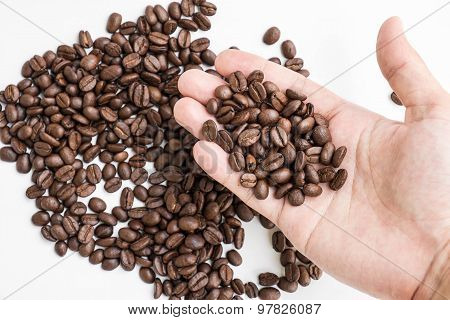 roasted coffee beans on agriculturist's hand