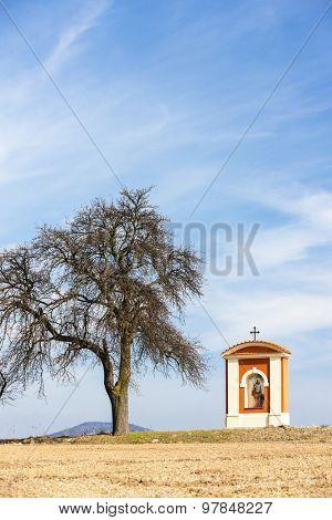 God's torture in Kokorin Region, Czech Republic