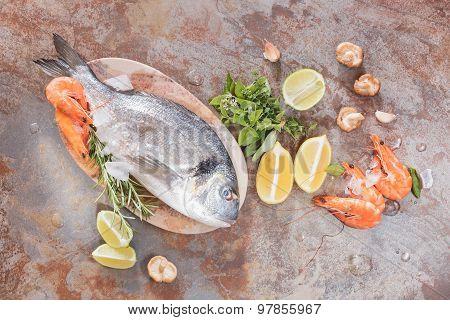 Fresh fish and shrimps