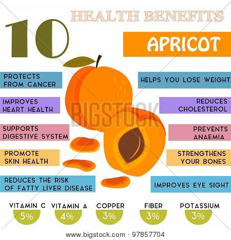 10 Health Benefits Information Of Apricot. Nutrients Infographic,  Vector Illustration. - Stock Vect