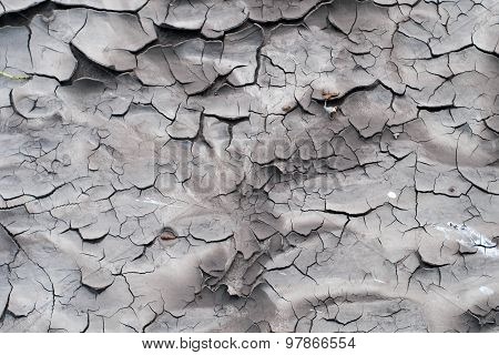Cracks on drying soil after flood
