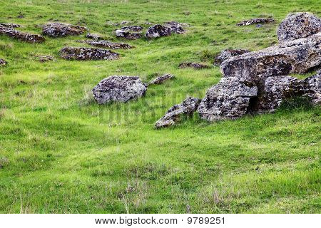 Rocks And Green Field