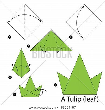 step by step instructions how to make origami A Tulip(leaf).