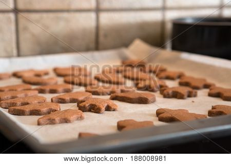 Freshly Baked Homemade Cutout Cookies