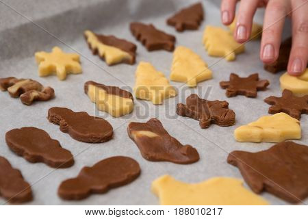 Variety Of Cutout Cookie Shapes