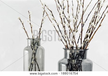 willow branches in glass vases on a wooden gray table-top. selective focus.