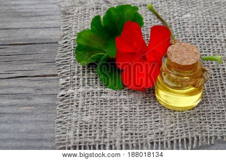 Geranium essential oil in a glass bottle with flower and leaf of the geranium plant on wooden background.Geranium oil for spa,aromatherapy and bodycare.Extract oil of geranium.