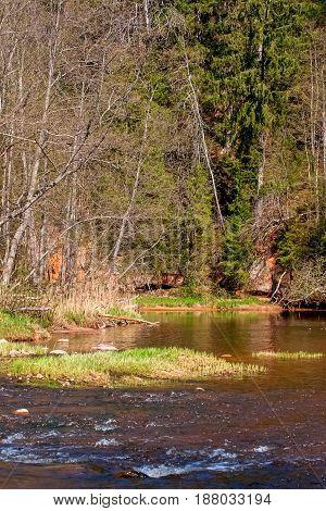 Amata river near Zvarte rock. Gauja national park