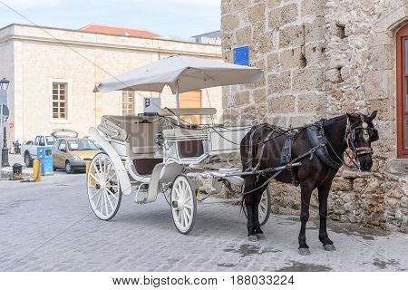 A White Carriage Harnessed By A Black Horse Stands On A City Street