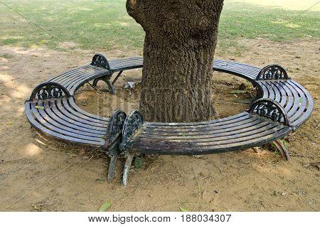 Decorative metal circle bench around tree trunk in Asia