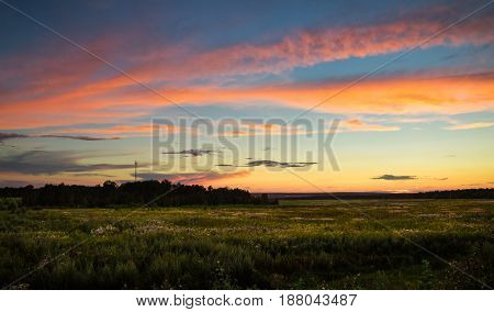 Vanilla sunset in a field at summer. Blue sky with coral clouds. Behind the forest there is a tower of cellular communication.