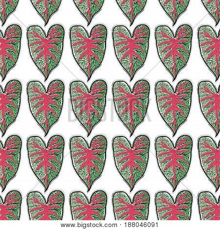 leaf of natural plant herb botany background, vector illustration