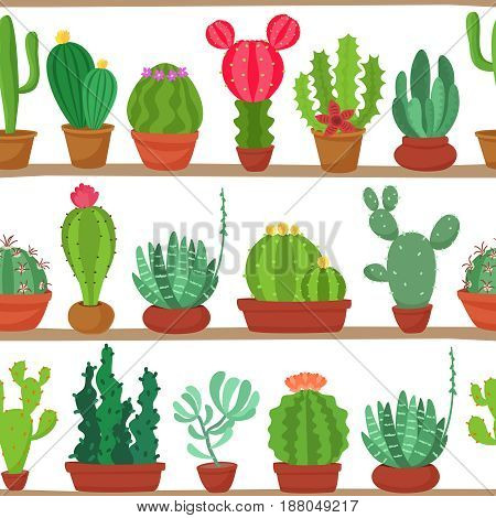 Seamless pattern of cactuses and succulents in pots on a shelves. Indoor plants on the shelves isolated on white background. Natural background of indoor plants in cartoon flat style. Vector illustration.