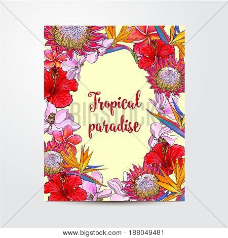 Postcard, greeting card, banner design with exotic, tropical flowers, oval place for text, sketch vector illustration isolated on white background. Banner, postcard, frame with tropical flowers