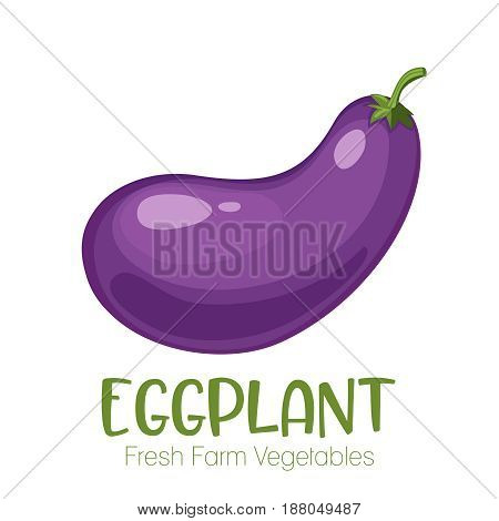 Vector eggplant isolated on white background.Vegetable illustration for farm market menu. Healthy food design poster. Cartoon style vector