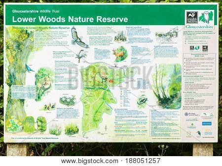 INGLESTONE UK - MAY 19 2017 Lower Woods Nature Reserve information board. Illustrated display of species and map at entrance to Gloucestershire Wildlife Trust's largest property