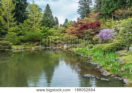 A view of a pond and garden in Seattle Washington.