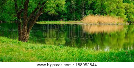 A magical place for outdoor recreation clean ecology no one around the river flows reflecting green plants warm season