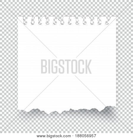 Sticky torn note paper isolated on transparent background
