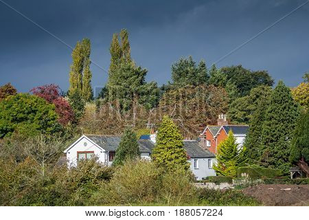 Residential houses on the outskirts of the city of Exeter. Near the houses there are many trees. Devon. England