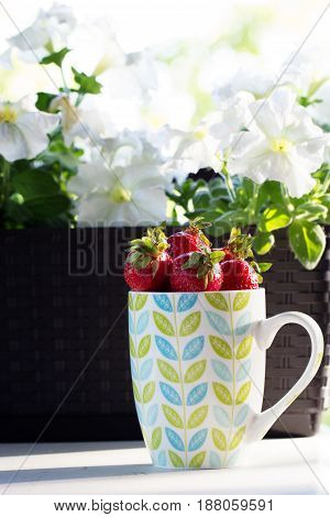 Fresh red strawberries in a cup. Red Strawberry