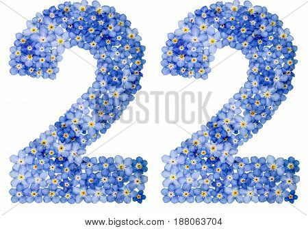 Arabic Numeral 22, Twenty Two, From Blue Forget-me-not Flowers