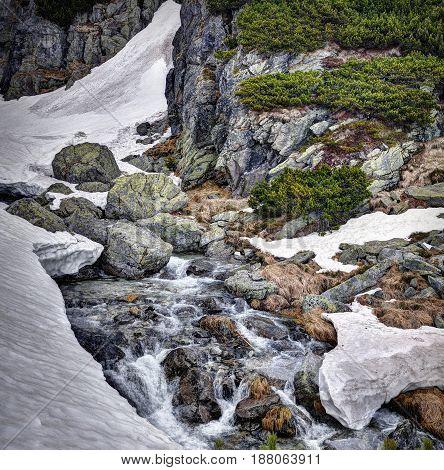 Creek near waterfall Skok High Tatras mountains. Slovakia.