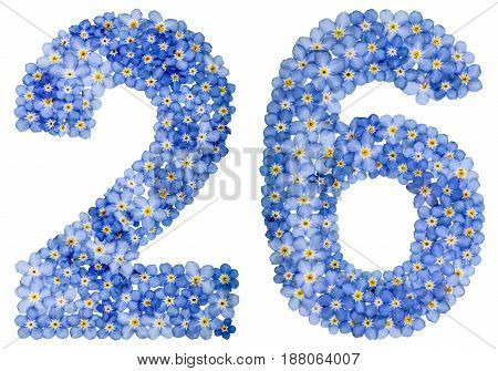 Arabic Numeral 26, Twenty Six, From Blue Forget-me-not Flowers