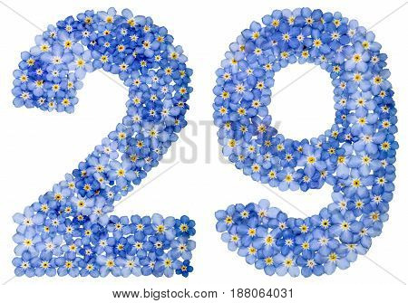Arabic Numeral 29, Twenty Nine, From Blue Forget-me-not Flowers