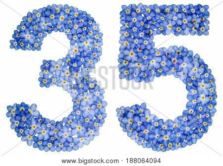Arabic Numeral 35, Thirty Five, From Blue Forget-me-not Flowers