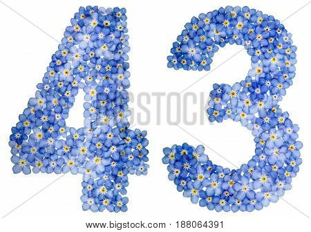 Arabic Numeral 43, Forty Three, From Blue Forget-me-not Flowers