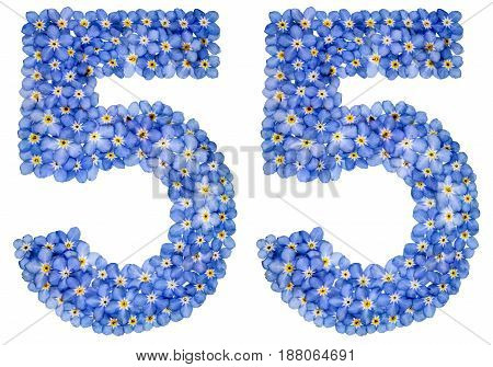 Arabic Numeral 55, Fifty Five, From Blue Forget-me-not Flowers