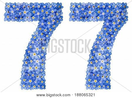 Arabic Numeral 77, Seventy Seven, From Blue Forget-me-not Flowers