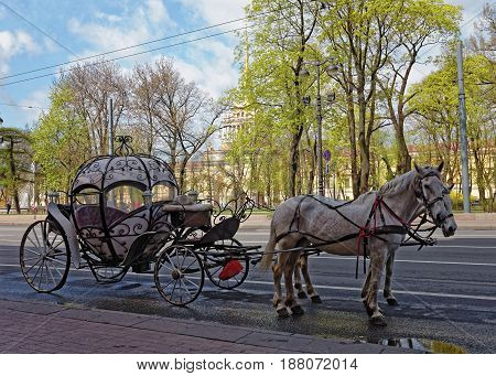 Carriage with horses in the background of the Admiralty building in St. Petersburg, Russia